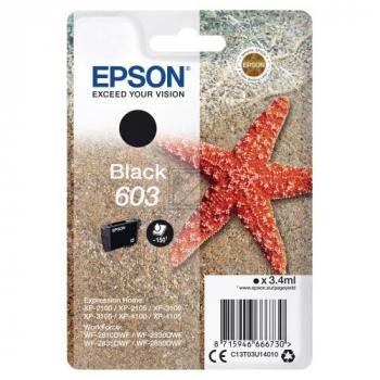 C13T03U14010 EPSON XP2100 TINTE BLACK ST / C13T03U14010